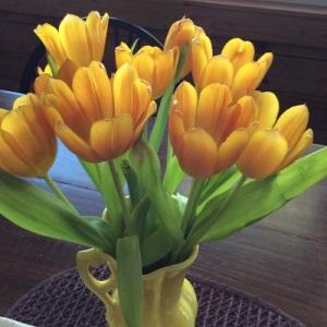 Spring tulips in Abbott's Glen's Dining Room