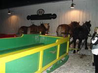 Adams Farm sleigh